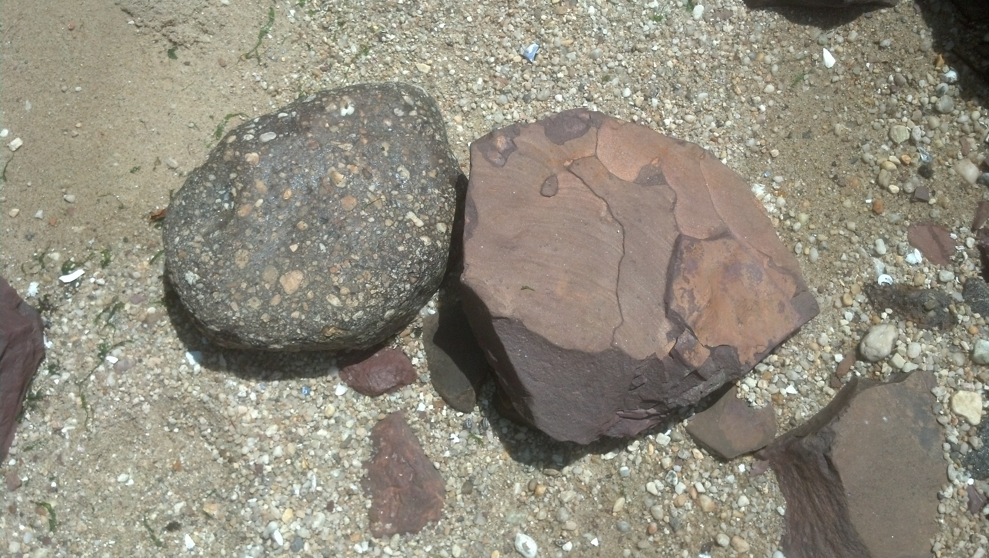 Red Shale Stone : Garvies point museum and preserve photo gallery