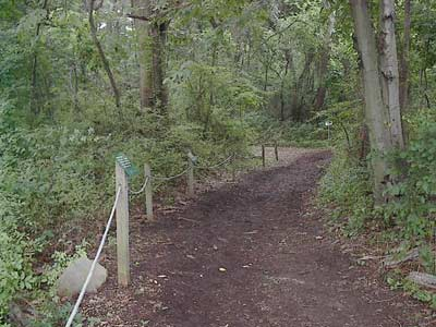 sight trail for the visually impaired